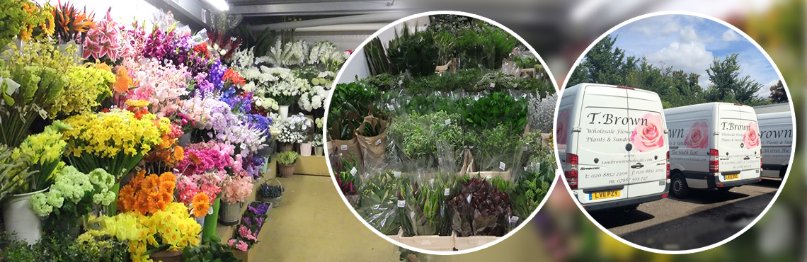 Tom Brown Wholesale Florist - Flowers, Plants and Sundries